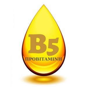Προβιταμίνη Β 5